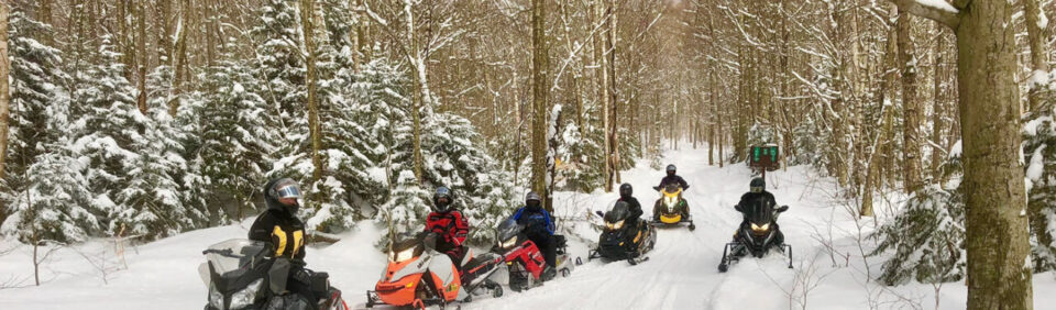 cropped-row-of-sleds.jpg